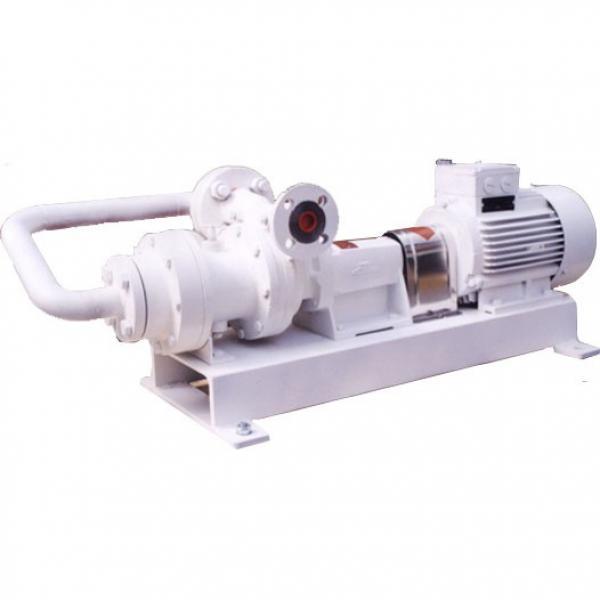 SUMITOMO QT61-200-A Low Pressure Gear Pump #1 image